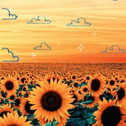 freetoedit srcsunnyclouds sunnyclouds