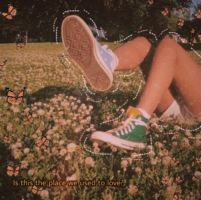 #freetoedit #love #loveislove #place #aesthetic #quotes #flowers #butterflies #vintage #iloveit