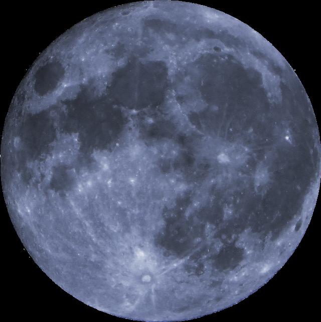 #luna #tumblr