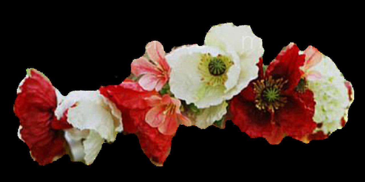#flowercrown #freetoedit