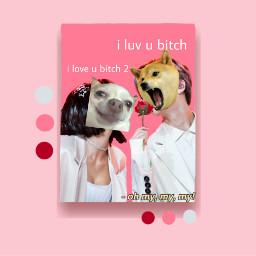 meme valantinesday doge dog bts freetoedit