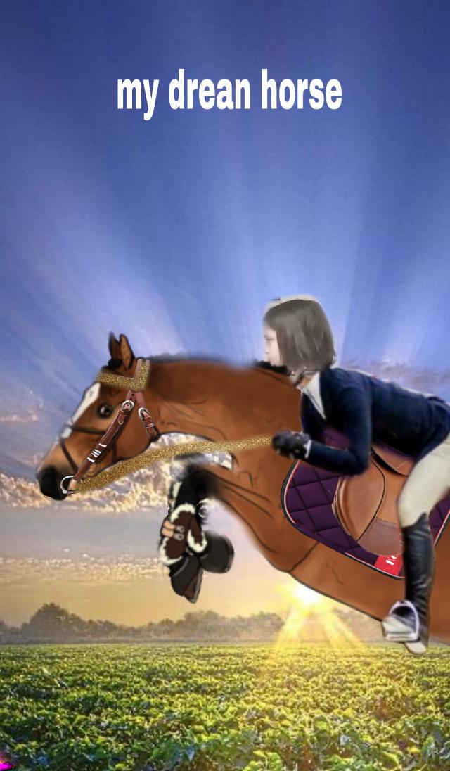 #my dream horse