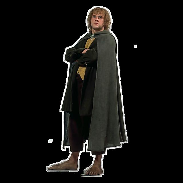 #hedwigowl #lotr #meinhdr #hobbit