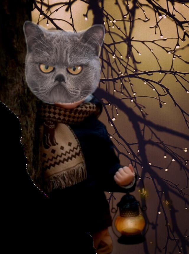 #freetoedit #halloweencat