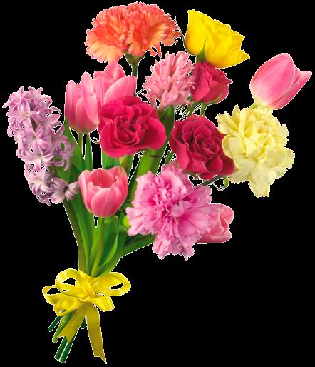 #tumblr #sticker #stickers #trend #flower #flowers #rose #roses #redrose #redflower #pinkflower  #pinkrose #plant #yellowflower #freetoedit