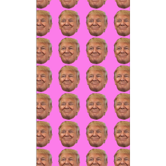 vsco donaldtrump pink background cute freetoedit