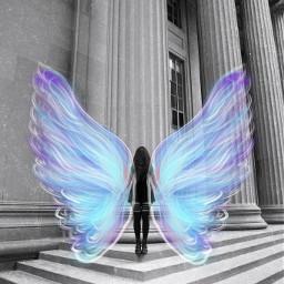 freetoedit wing wings wingsart wingsbts srcangelwings angelwings
