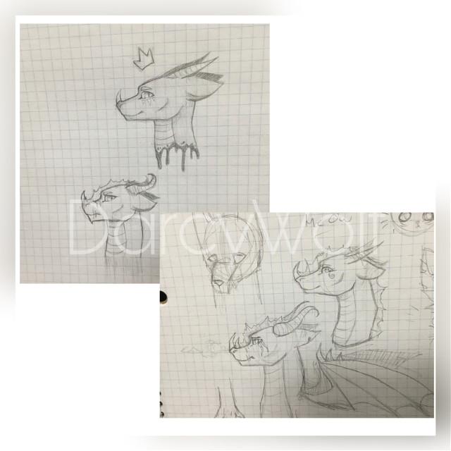 #art #sketch #dragon #wings #wingsoffire