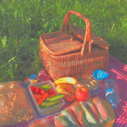 colors picnic aesthetic foods