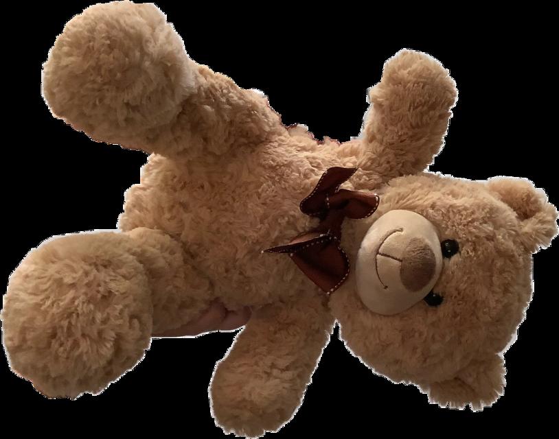 #teddybear #freetoedit