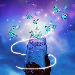 freetoedit jar emptyjar butterflys lights ircemptyjar