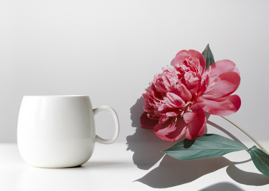 #freetoedit #flower #cup #red #white