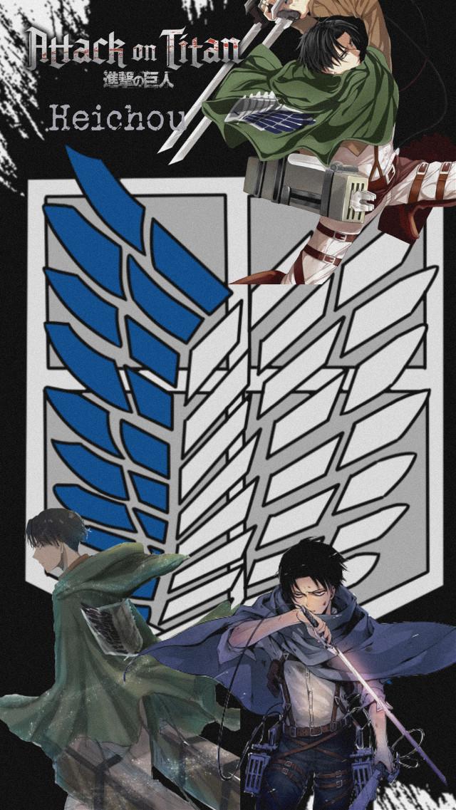 #freetoedit #aot #aotanime #leviackerman #levi #ackerman #snk #anime #manga #surveycorps #corpodiricerca