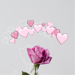 freetoedit challange rose sketch heartcrown echeartcrowns heartcrowns