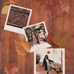 freetoedit autumn fall