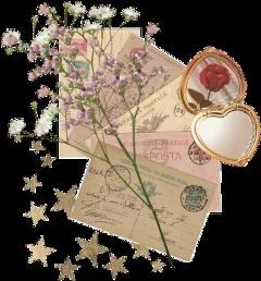 vintage rose moodboard moodboardaesthetic flower freetoedit