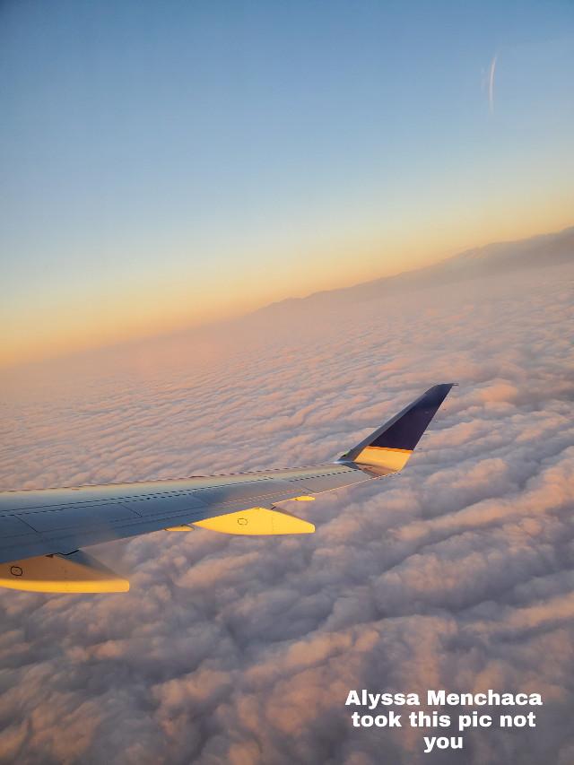 Sry Im posting so late I haven't had a signal  #madebylowkeyathestic #plane #clouds #sunrise💕
