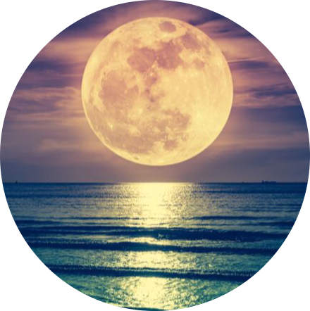 #moon,#sea,#freetoedit,#scmoon