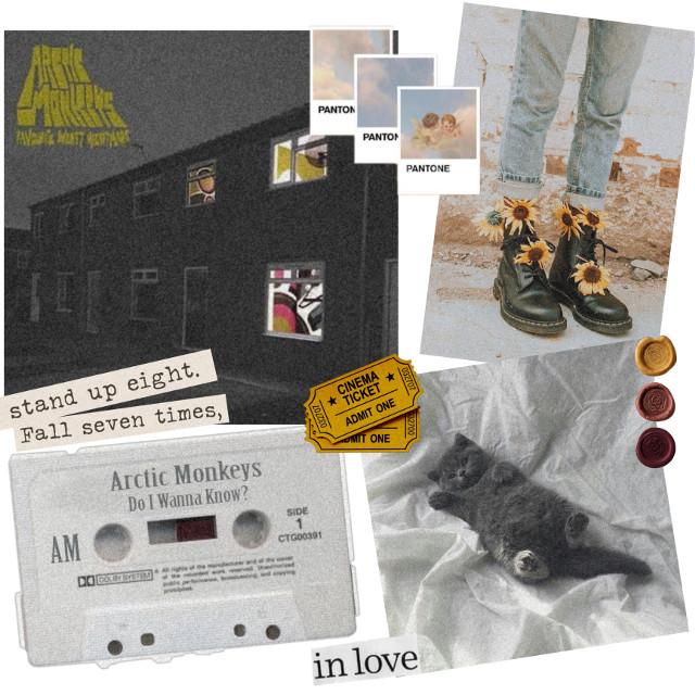 took a long time haha ——————————— #arcticmonkeys #aesthetic #aestheticposts #astheticpost #aestheticedit #moodboard #edits #pictureedit #vintage  #freetoedit