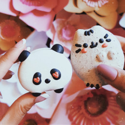 photography macarons cute food interesting freetoedit