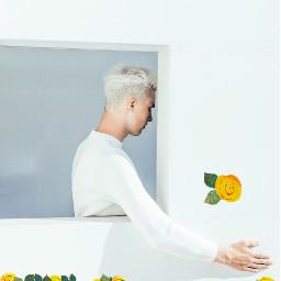 freetoedit yellowflowerbrush