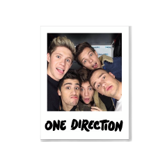 freetoedit onedirection niallhoran zaynmalik harrystyles