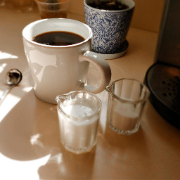 morning coffee coffeetime lifestyle foodphotography freetoedit pccoffeecup coffeecup
