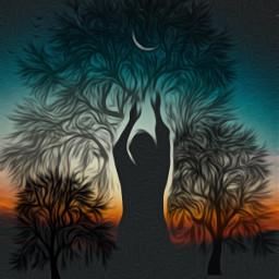 freetoedit dancinginthemoonlight trees sillhouette treesilhouette ircdancinginthemoonlight silhouette