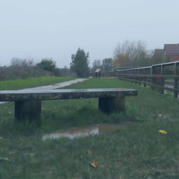 bench puddle raindays canalside outandabout freetoedit