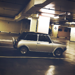 cars oldcar dogder cute freetoedit