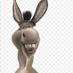 freetoedit sexy shrek donkey