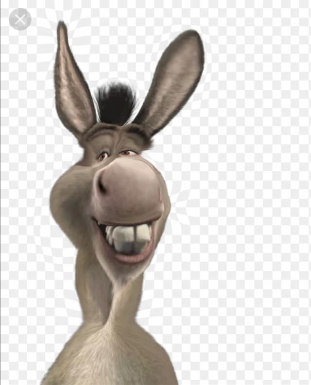 #freetoedit #sexy #shrek #donkey