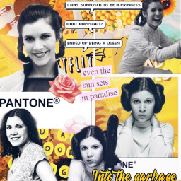 leiaskywalker leiaorgana collage edit carriefisher freetoedit