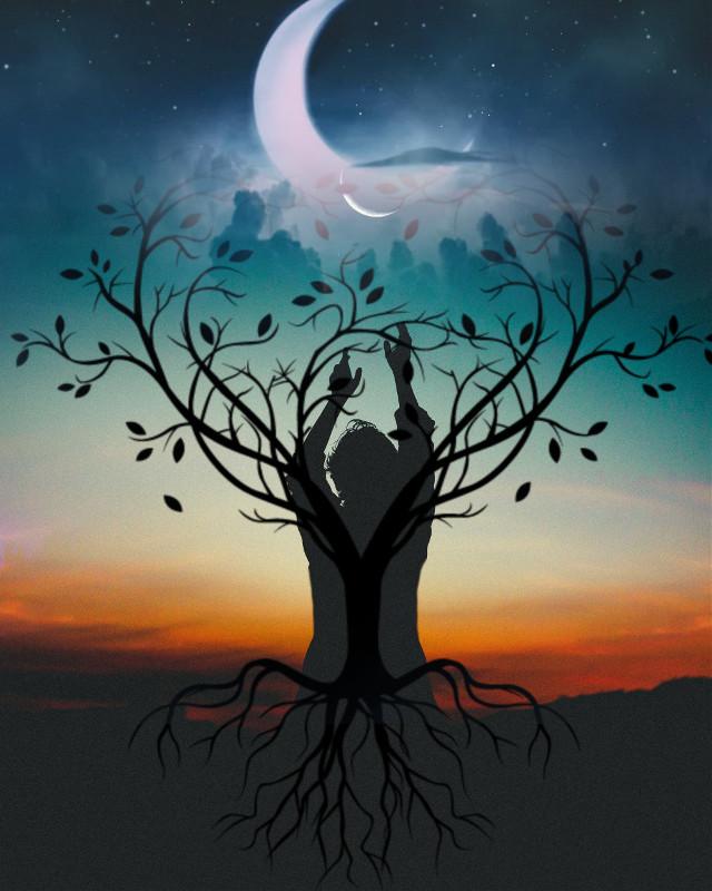 #freetoedit #moon #treeoflife @picsart #picsartedit #picsarteffects @picsart @juliajulia5552 #likeit