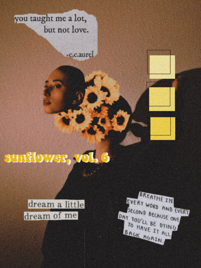 #freetoedit #sunflower #picsart #girl #edit #yellow #aesthetic #texts #vintage #aestheticyellow #aesthicedit #sorryifitsbad #woman #women #firstedit  #orange #imbadatediting  #toomanyhashtags