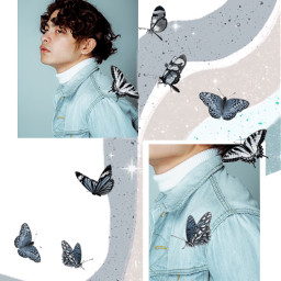freetoedit collage butterflies aesthetic wavy