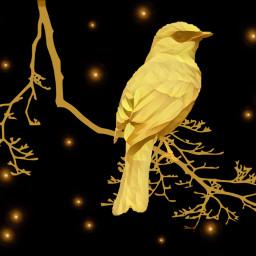 freetoedit thankyouforyourstickers bird golden