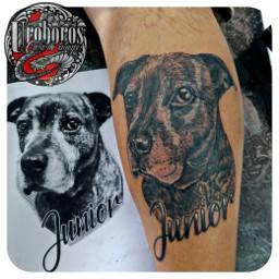 tattoo tatuaje perro mascota dog