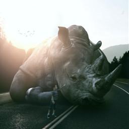 gigant animallover animal fauspre surreal freetoedit ecgiantanimals giantanimals