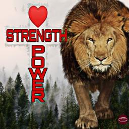 freetoedit lion power strength love ecgiantanimals giantanimals