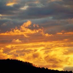 freetoedit sunset silhouette multicolored orangecolor