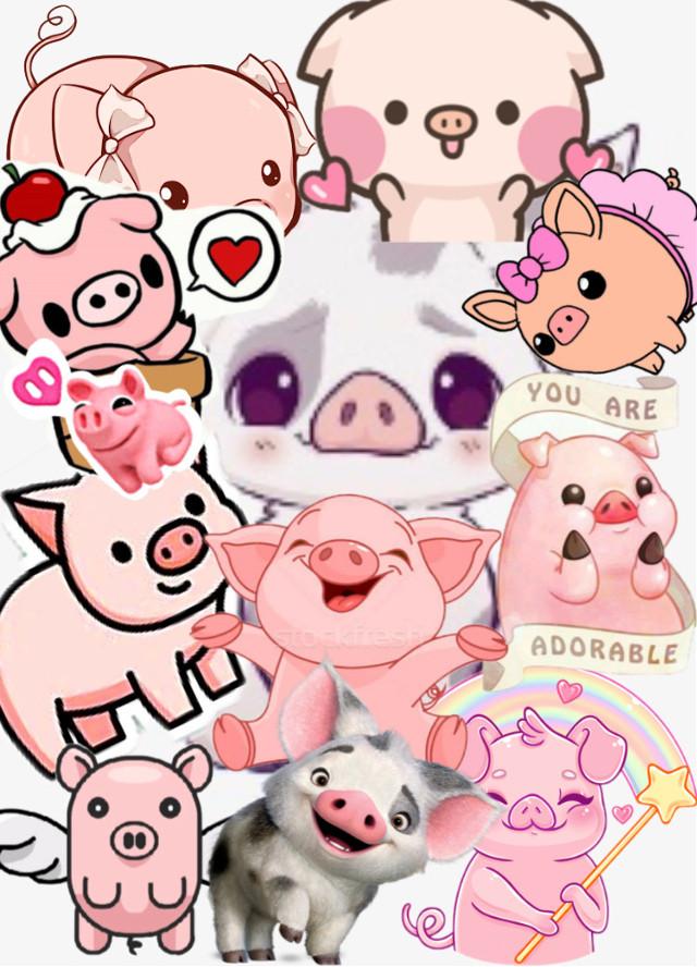 #freetoedit #pig