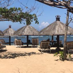 paradise traveling tbt freetoedit