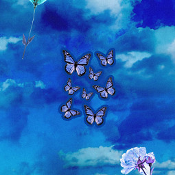 freetoedit wallpaper blue azul borboleta