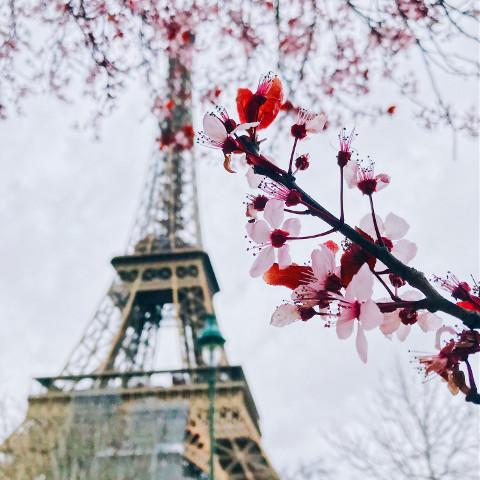 #pcspringinyourcity,#springinyourcity,#spring,#photography
