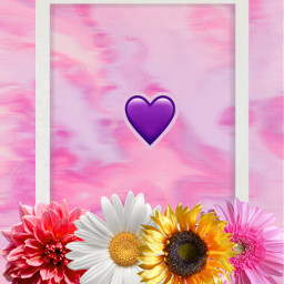 freetoedit wallpaper papeldeparede rosa roxo