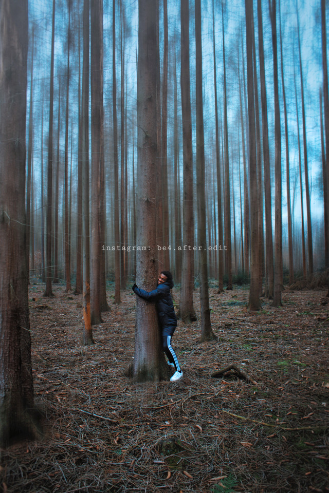 #freetoedit #photography #woods #forest #fun #love #wald #outdoor #naturephoto#potd #photooftheday