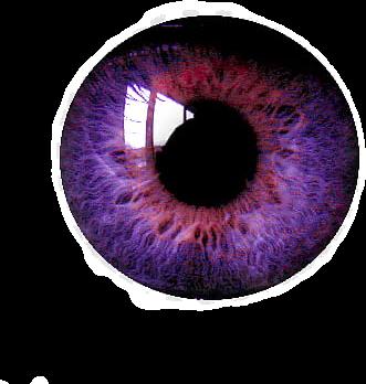 #eye #sticker #eyesticker #blue #eyes #eyeart #eyelid #eyelashes #interesting #nature #photography #stickers #eyestickers #oog #ogen #eyeball #eyecolor #corona #coronasticker #freetoedit #freetoedit