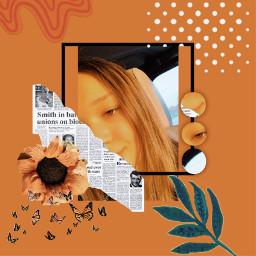 freetoedit orange orangeaesthetic sunflower sunshine rcorangeframe orangeframe replay createfromhome stayinspired