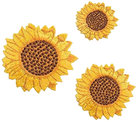flower flowers sun sunflower yellow scrapbook freetoedit
